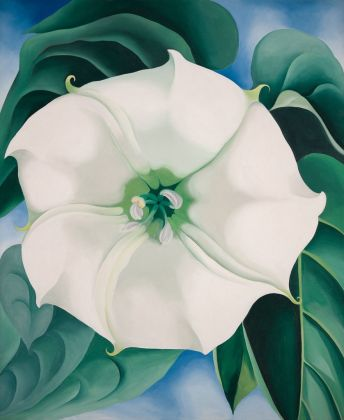 Georgia O'Keeffe, Jimson Weed-White Flower No. 1, 1932 - Crystal Bridges Museum of American Art, Bentonville, Arkansas - © 2016 Georgia O'Keeffe Museum-Bildrecht, Wien - photo Edward C. Robison III