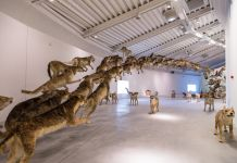 Cai Guo-Qiang, Head on, Centro Pecci, Prato, 2016