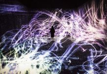 teamLab, Crows are Chased and the Chasing Crows are Destined to be Chased as well, Transcending Space
