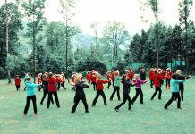 Marinella Senatore, The School of Narrative Dance. Die Große Parade, Public Parade, Ebensee