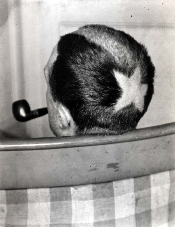 Marcelle Duchamp, Tonsura, Man Ray