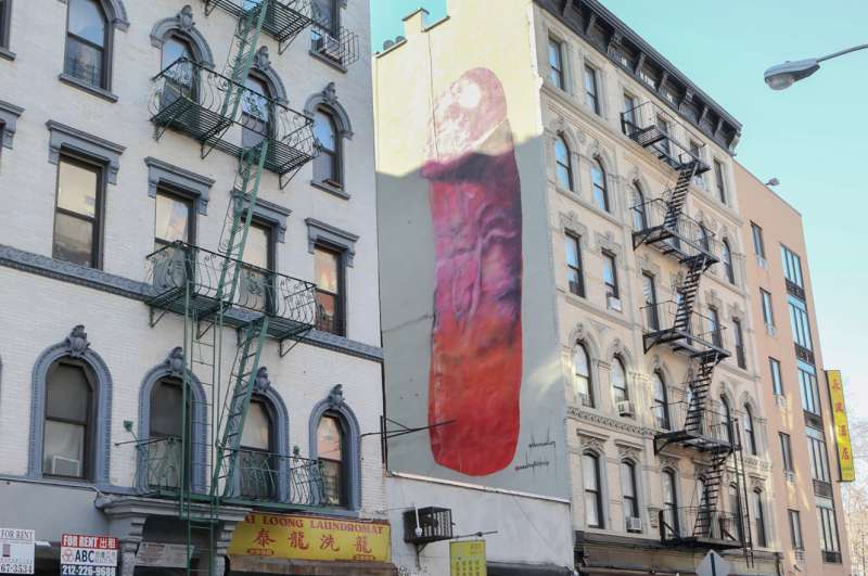 Il graffito di Carolina Falkholt  a New York