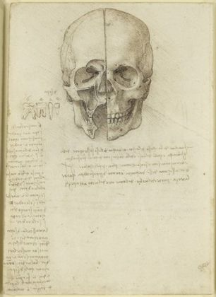 The skull sectioned, 1489, traces of black chalk, pen and ink