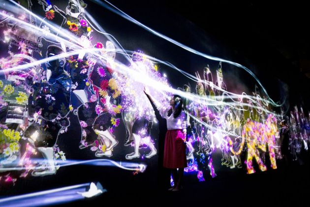 MORI Building Digital Art Museum. teamLab Borderless. The Way of Sea and Animals of Flowers