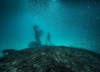 Damien Hirst – Treasures from the Wreck of the Unbelievable