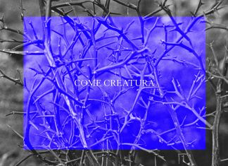 Francesco De Grandi – Come Creatura