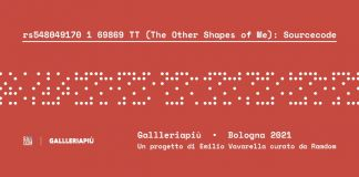 Emilio Vavarella – rs548049170_1_69869_TT (The Other Shapes of Me): Sourcecode