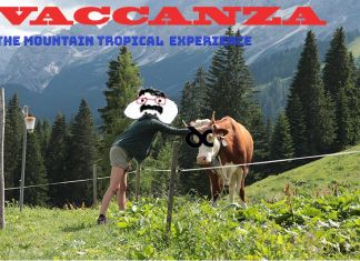 Vaccanza – The Mountain Tropical Experience