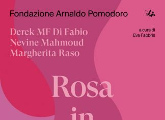 Project room #14 – Rosa in mano