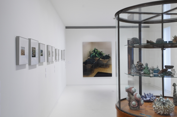 Veduta della mostra La carte d'après Nature, une sélection d'artistes par Thomas Demand (Photo NMNM Adrien Missika, 2010)