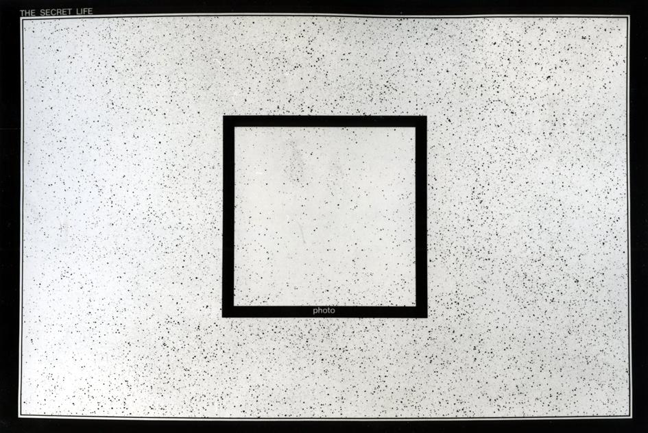 Antonio Dias, The Secret Life, 1970