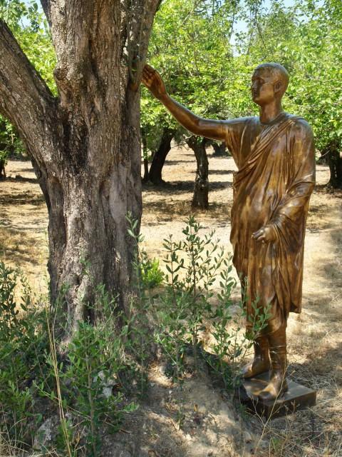 Arte contemporanea al Parco Archeologico di Scolacium