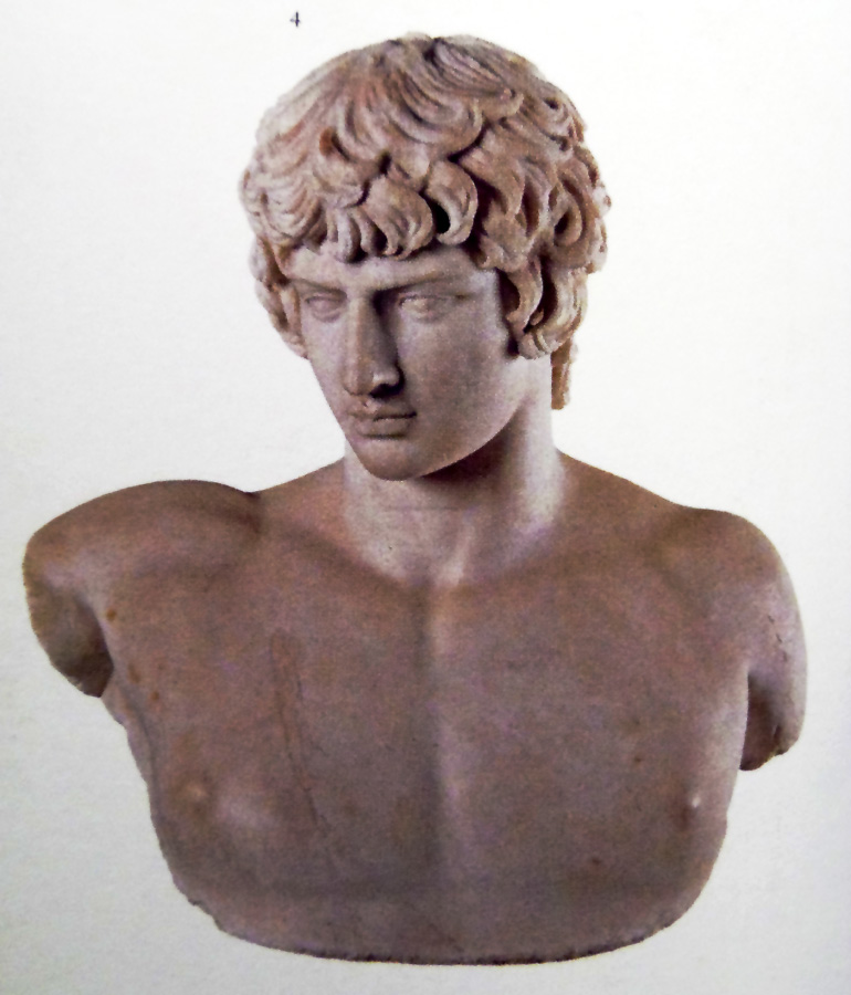 Busto di Antinoo in marmo pario, da Tivoli-Villa Adriana (cat. n. 4)