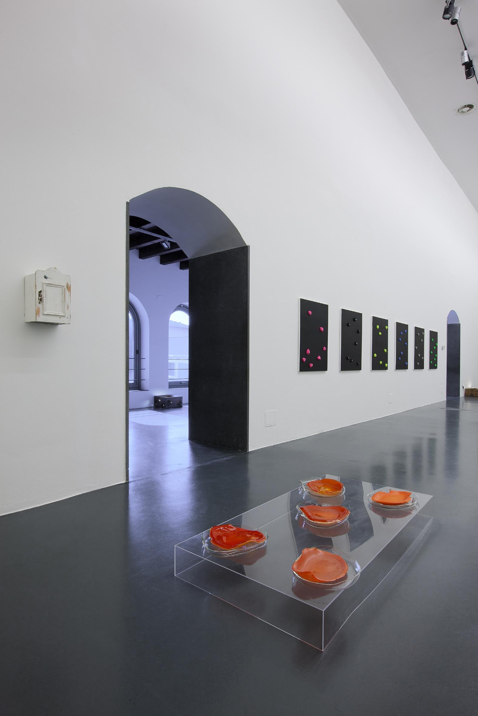 The Log-O-Rithmic - veduta dell'installazione presso la GAMeC, Bergamo 2012 - Foto: Antonio Maniscalco - Da sinistra a destra: Kaspar Müller, Untitled (Cabinet), 2011 / Anicka Yi, Bolivian Bath, 2012 / Oliver Payne, Untitled, 2012