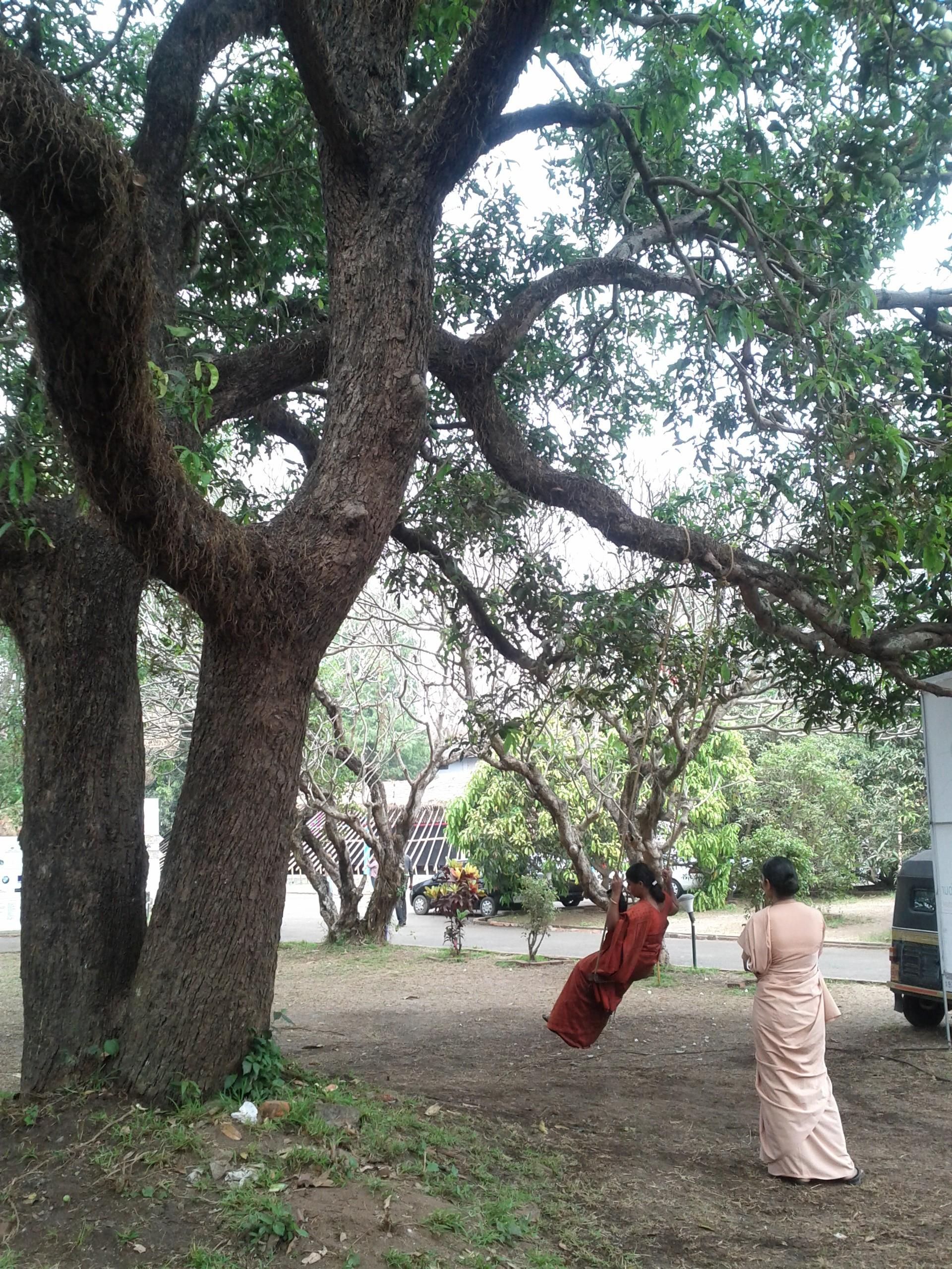 Biennale di Kochi-Muziris 2012