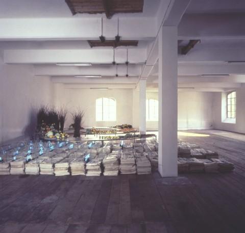 La mostra di Mario Merz da Tucci Russo nel 1976