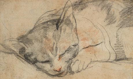 Federico Barocci, Studio per un gatto, Uffizi