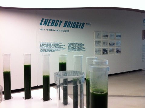Energy - veduta della mostra presso il Maxxi, Roma 2013