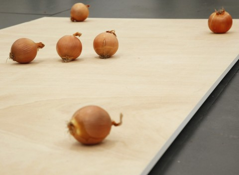 Shimabuku, Onion Onion, 2008 @ Air de Paris