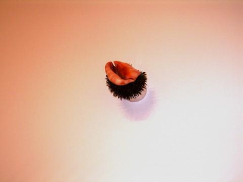 Philippe Droguet - Blow up - veduta della mostra presso il MAC, Lione 2013