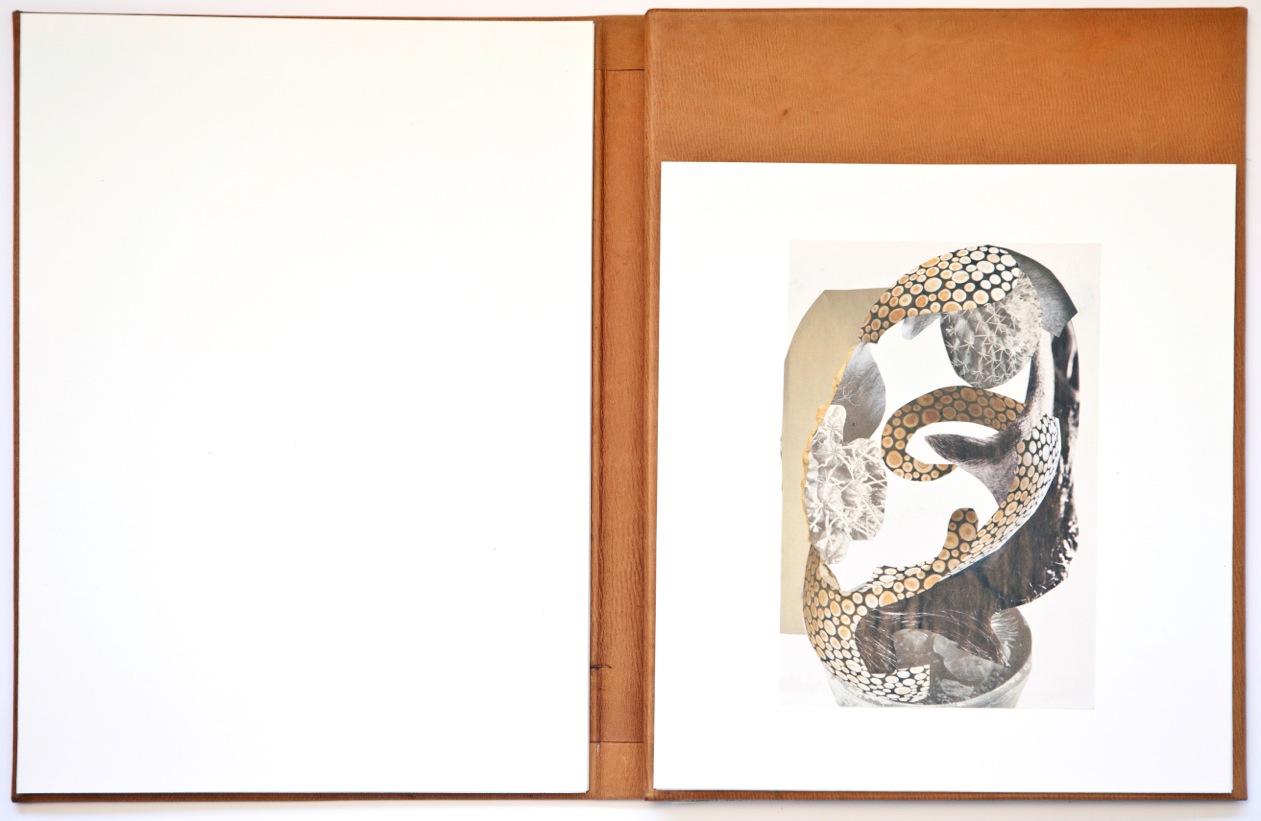 Un Nuovo Libro Dartista Per Alessandro Roma Collage E Disegni
