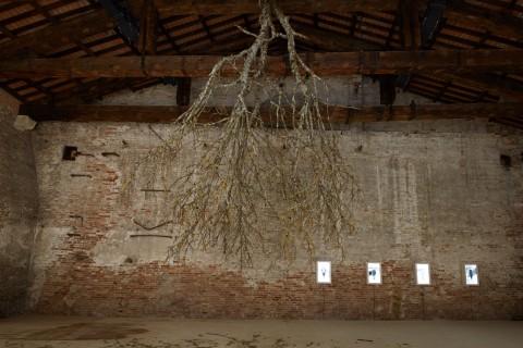 Biennale di Venezia 2013 - Padiglione Lettonia