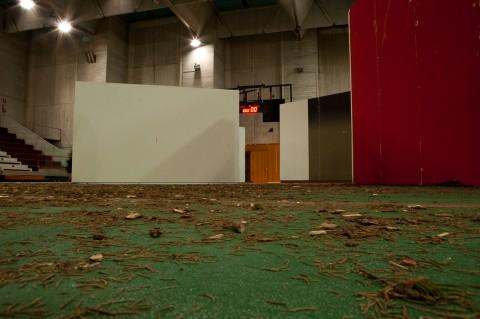 Biennale di Venezia 2013 - Padiglione Lituania