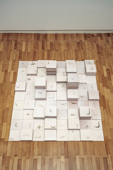 Donatella Spaziani, 25 aprile 2013, 2013, matita su ceramica, dimensioni ambiente, Courtesy Studio Oredaria