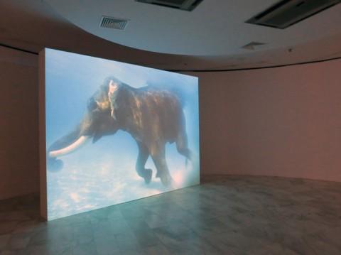 Biennale di Salonicco 2013