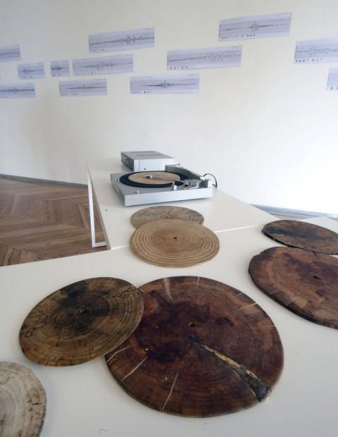 Elisa Strinna, Wood Songs, 2008 - opera realizzata in collaborazione con Eva Cenghiaro - Courtesy l'artista e Eva Cenghiaro
