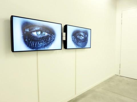 Secondo Anno. Collezione Giancarlo e Danna Olgiati - veduta della mostra presso lo Spazio -1, Lugano 2013