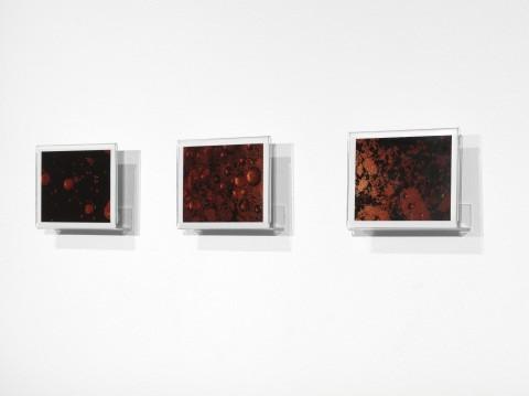 Beatrice Pediconi - 9'/Unlimited - veduta della mostra presso la Collezione Maramotti, Reggio Emilia 2013 - photo Dario Lasagni