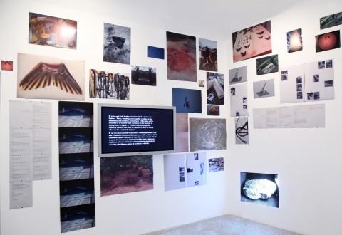 Braccia #1 (archive) - veduta della mostra presso il MAN, Nuoro 2013