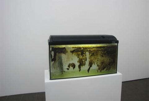James Krone - Waterhome: we is somebody else - veduta della mostra presso la Brand New Gallery, Milano 2013