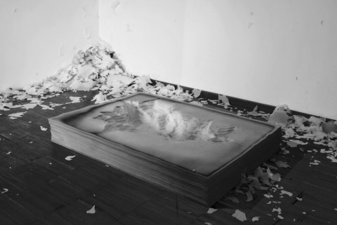 Francesco Crovetto, Altrove, 2013 - fogli di gomma spugna, 25 x 100 x 150 cm
