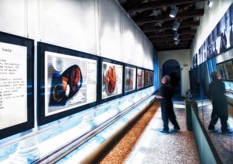 Henry Hargreaves – No seconds, Comfort Food e Fotografia - veduta della mostra presso il Museo della Follia, Venezia 2013 - photo Gabrio Tomelleri