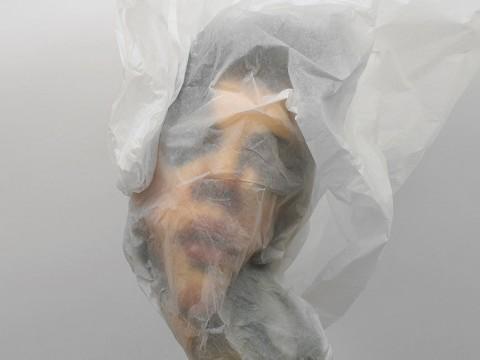 "Rupert Shrive, Nebula, 2011, acrylic on paper, polyurethane, papier de soie, 52x37x22 cm, from the ""Veiled Sculptures"" series"