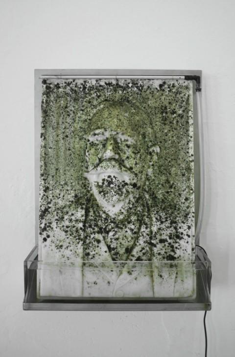 Massimiliano Pelletti, Moss