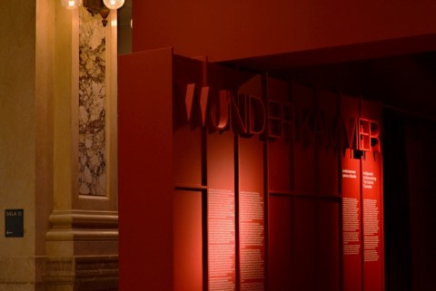 Wunderkammer. Arte, Natura, Meraviglia ieri e oggi - veduta della mostra presso le Gallerie d'Italia, Milano 2013
