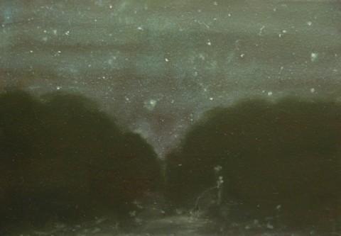 Thomas Braida, Pisciatina notturna, 2013, olio su tela, cm 20x30