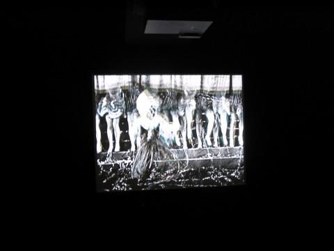 Joseph Cornell e i Surrealisti a New York - veduta della mostra presso il Musée des Beaux-arts, Lione 2014