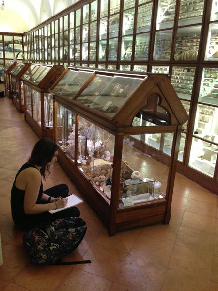 Studenti del Siena Art Institute al Museo dei Fisiocratici