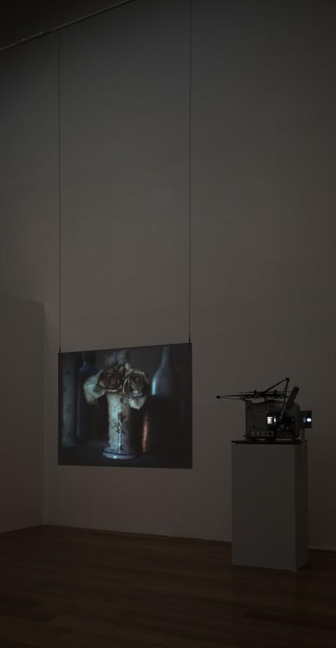 Tacita Dean - The Studio of Giorgio Morandi - veduta della mostra presso il Mambo, Bologna 2014 - photo  Matteo Monti