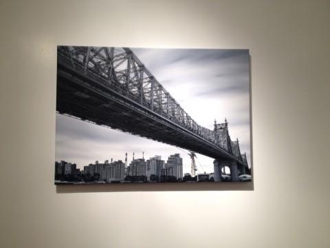 Andrea Chiesi - veduta dell'installazione presso l'Istituto Italiano di Cultura, New York 2014