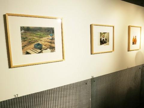 Fabio Barile / Francesco Neri - Middle-Earth - veduta della mostra presso lo Showroom Elica, Milano 2014