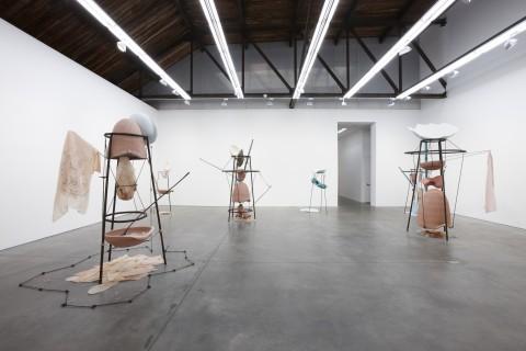 "Tunga - From ""La Voie Humide"" - veduta della mostra presso Luhring Augustine, New York 2014 - photo Farzad Owrang"