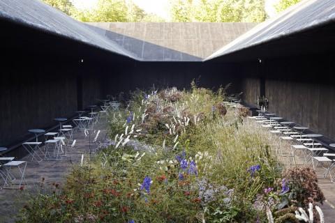 Serpentine Pavilion 2011, by Peter Zumthor, Piet Oudolf (courtesy Green Island)