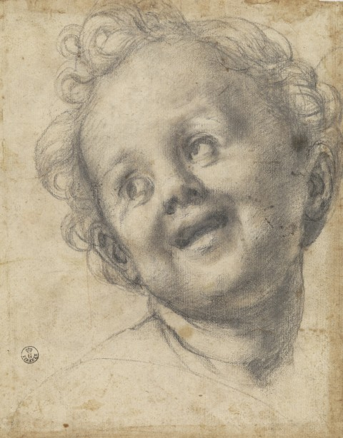 Pontormo, Studio per il Gesù Bambino della Pala Pucci, 1518, pietra nera su carta, cm 218x168. Firenze, Gabinetto Disegni e Stampe