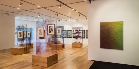 Somos Libres II, Pinacoteca Giovanni e Marella Agnelli, 2014, installation view