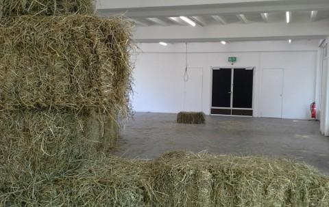 Andra Ursuta, installation view, Breath Hold (Discipline and Vanish), 2010